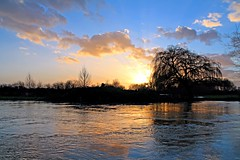 Water Willow (Rob Felton) Tags: sunset sky sun water clouds river landscape bedford flood scenic bedfordshire naturereserve wetlands felton floodplain greatouse robertfelton fenlake fenlakemeadowslocalnaturereserve