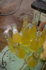 Bottling cider (Jacob Damgaard) Tags: apple wine bottles champagne cider sugar danish apples bottling applewine
