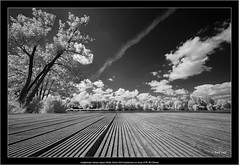 Voigtlander Heliar-Hyper Wide 10mm f/5.6 Aspherical on Sony A7R IR(720nm) (Dierk Topp) Tags: 720nm a7rir bw voigtlanderheliarhyperwide10mmf56aspherical architecture bildungszentrum clouds infrared nature reinfeld sw sony