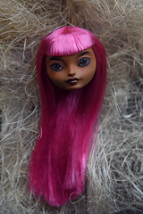 Ginger`s head (Danya St.) Tags: custom ooakdoll ooak doll eah everafterhigh repaint ginger gingerbreadhouse head