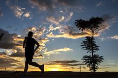 La soledad del corredor de fondo II 257_2016_7451 (Jos Martn-Serrano) Tags: proyecto proyecto366 proyecto365 365 366 run correr corriendo corredor atleta atletismo carrera footing deporte aire libre airelibre running atardecer sunset puestadesol