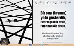 Kerim Kuran - nsan 3 (Oku Rabbinin Adiyla) Tags: allah kuran islam ayet god religion bible muslim rahman oku okurabbini road judgementday holyquran