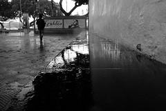 Cuando la lluvia te sigue / Pan fo'r glaw'n dy ddilyn - Las Palmas (Rhisiart Hincks) Tags: cawod barradglav shower eurizaparrada zaparrada downpour fras glaw glav euri rain pluie uisge bisteach lluvia pluvo es regen  grancanaria lapalmas duagwyn gwennhadu dubhagusgeal dubhagusbn zuribeltz czarnobiae blancinegre blancetnoir blancoynegro blackandwhite  bw feketefehr melnsunbalts juodairbalta negruialb siyahvebeyaz rnoinbelo    zwartenwit mustajavalkoinen crnoibelo ernabl schwarzundweis