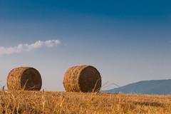 Straw bales (sanderh1) Tags: straw bales stro balen