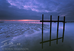 Hashtag (Robin Higginson) Tags: twotreeisland essex landscape sea sunrise