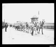 Work horses, cargo cart and men crossing Pyrmont Bridge in Sydney, 1902-1917