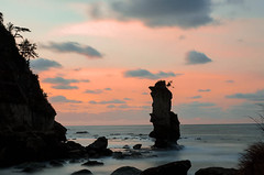 Rock and pine tree on the sea  (Masashi bon) Tags: sunset tree japan pine landscape island ngc   allxpressus  02