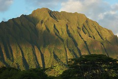 Oahu Pali Hwy Scene (clear_eyed_man) Tags: travel hawaii oahu