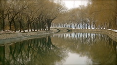 Summer Palace canal (John Horstman (itchydogimages, SINOBUG)) Tags: china winter summer brown reflection beijing palace tumblr itchydogimages