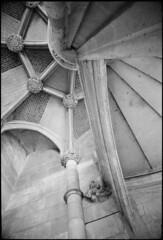 Blois_10 (Chris Protopapas) Tags: sculpture france castle art stone architecture nikon stair arch gothic medieval ceiling vault loire blois nikons3 drumscanner visipix hells3900 itsnotacapture