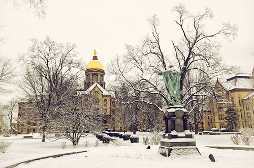 golden dome bathed in white
