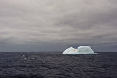 the iceberg (oliver.dodd) Tags: ocean water penguins antarctica iceberg southernocean thedrake