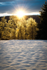 Snowy Sunrise (nmp.hotography) Tags: morning sun sunlight snow mountains color tourism nature beautiful forest advertising outdoors photography gold golden virginia nikon scenery perfect photographer shadows vibrant photojournalism advertisement commercial va flare sunburst 1855mm winchester glittery attractions millwood f3556 theblueball nmphotography d3100 nataliepedraja