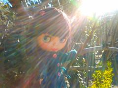 Emily in sunshine