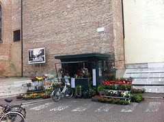Flowers in Treviso, IT (BuonCuore) Tags: street food coffee car truck snacks van cart sales vending olsen concession grumman foodtruck stepvan streetsales