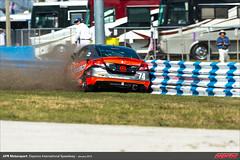 DIS-CTSCC-Race-2013169