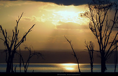 Sunset at Lake Nakuru (2) (Tamara Photography) Tags: africa travel trees sunset wild nature landscape lumix nationalpark kenya safari eastafrica lakenakuru blinkagain bestofblinkwinners blinksuperstars