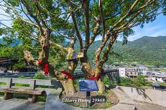 Harry_29868,,,,,,,,,,,,,,,,,,,,,,,, (HarryTaiwan) Tags:                         houtong newtaipeicity     harryhuang   taiwan nikon d800 hgf78354ms35hinetnet adobergb