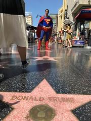False idols (daveblume) Tags: trump superman mythology hollywoodblvd