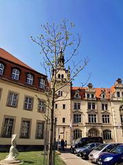 Bernburg (mlbp372) Tags: bernburg sachsenanhalt oldtown altstadt historic historisch