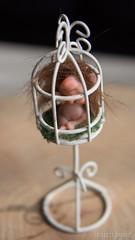 Caged troll (Shirleys Studio | Handmade Art Dolls) Tags: shirleysstudio shirleys studio beeldende kunst art artist grotto troll ooak dolls trollen trolletjes boswezens fantasy doll artdoll trol trolls figurine handmade