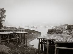 Corea Harbor, fog.jpg (dwoodpics) Tags: wharf waterfront rowboat dock fishing corea pilings nautical commercialboat lobstertrap lobstering fog boats maine coastal blackwhite