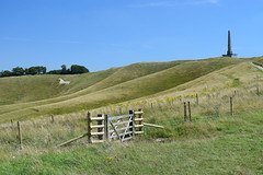 History (daviddaniels989) Tags: view hill white horse monument history relic fence gate sky grass trees cherhill wiltshire