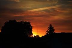238 Dgrad (Benguistar) Tags: sunset soleil couleurs projet 366