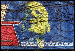 Artists: ECB, Sweet and Zoolo (pharoahsax) Tags: graffiti buehl pmbvw bw baden wrttemberg sden deutschland kunst art streetart street urban urbanart paint graff wall germany artist legal mural painter painting peinture spraycan spray writer writing artwork tag tags worldgetcolors world get colors