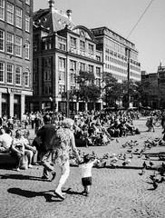 Pigeons @ Dam square (Amsterdam) (PaulHoo) Tags: amsterdam city urban citylife people candid cityview holland netherlands fomapan mediumformat film 120film 645 ga645 fujifilm analog monochrome bw blackandwhite 2016 pigeons grandma children animal square dam bijenkorf architecture