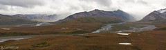Panorama from the Polychrome Pass - Denali National Park (Sinar84 - www.captures.ch) Tags: 2016 alaska august black blue bushes clouds denalinationalpark fall foliage gras green grey hills landscape lastfrontier mountains nationalpark nature orange pass polychrome polychromepass red sky trees usa white yellow