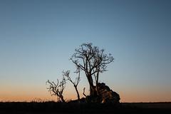 (emiliokuffer) Tags: nikon nikond610 landscape paisaje sunset atardecer horizon horizonte campo countryside