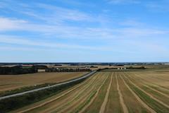Perfect symmetry (LaDani74) Tags: panorama landscape scandinavia lokken jutland sky summer nature denmark fields plowed route