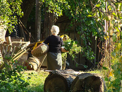 Transylvanian Garden (Paul.White) Tags: green rural garden photography gardening transylvania rurallife ruralliving erdély selfsufficiency ruralromania ruraltransylvania
