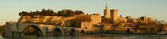 Pont Saint-Bénézet y Palacio Papal desde la Île de la Barthenasse, Avignon (F) (Panoramyx) Tags: bridge panorama france puente frankreich frança paca ponte panoramica pont frankrijk brücke avignon francia brud vaucluse avignone provencealpescôtedazur aviñón avinyó provenzaalpescostaazul provenzaalpicostaazzurra provençaalpscostablava