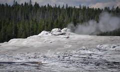 Old Faithful Geyser 5 (jsj1771) Tags: old group basin upper yellowstone wyoming geyser faithful