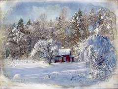 Winter in the country. (Bessula) Tags: winter house snow tree texture nature forest sweden country cottage motat photomix bessula tatot 100commentgroup bestcapturesaoi magicunicornverybest magicunicornmasterpiece extraordinarilyimpressive ruby10 ruby5 rememberthatmomentlevel4 rememberthatmomentlevel1 rememberthatmomentlevel2 rememberthatmomentlevel3 bestevercompetitiongroup bestevergoldenartists rememberthatmomentlevel5 rememberthatmomentlevel6 creativephotocafe besteverdigitalphotography motat~january2013frontpage