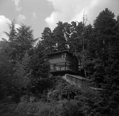 117-02 · El Escorial (Danipuntocom) Tags: madrid blackandwhite bw españa blancoynegro film mediumformat spain kodak trix d76 elescorial 6×6 agilux agifold agiluxanastigmat