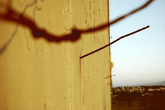 Sides of decay. (ADIDA FALLEN ANGEL) Tags: sky broken nature wall israel nikon decay horizon d40