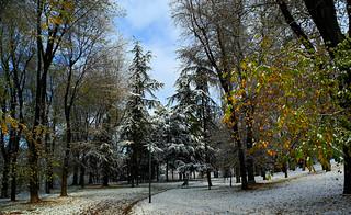 Milano, Monte Stella (Montagnetta) - Dicembre 2012