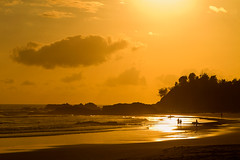 Morning Light (< Nick Friend >) Tags: ocean water sunrise australia nsw surfers merrychristmas sillhouette happynewyear portmacquarie townbeach