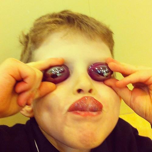 My son, the fly #igerswinnipeg