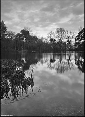 mono reflection #2 (Steve Denny) Tags: trees blackandwhite bw lake reflection water clouds kent pond sony nd bromley timedexposure a300 ndfilters fliter keston kestonponds