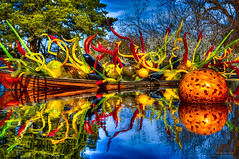 Chihuly at the Dallas Arboreturm (Jeff_B.) Tags: sculpture chihuly glass beautiful dallas colorful texas dale vivid dalechihuly hdr arboreturn