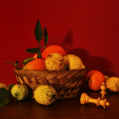 scacco alla regina (Proprionegato) Tags: stilllife orange lemon nikon chess queen regina bishop limoni naturamorta scacchi arance alfiere creativephotocafe