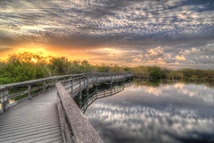 Everglades National Park, Anhinga Trail HDR (Brandon Kopp) Tags: travel sunset reflection nature reflecting nikon florida outdoor tokina everglades hdr d300 photomatix 1116mm
