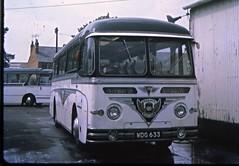 WDG633 (21c101) Tags: aec roe blackandwhite associatedmotorways cheltenham 1969 reliance coachstation wdg633 gloucestershire aecreliance cheltenhamspa blackandwhitemotorways 2mu3rv 207 1959