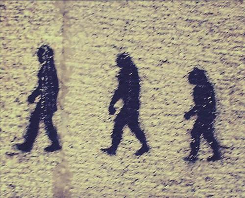 Creacionismo VS Evolución