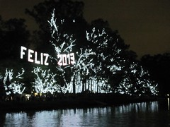 luzes de Ano Novo - Ibirapuera (Vitria Medeiros) Tags: ibirapuera luzes rvores feliz2013