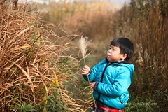 _MG_3752 (baobao ou) Tags: family boy kids funny asia child 52weeks familygetty2011
